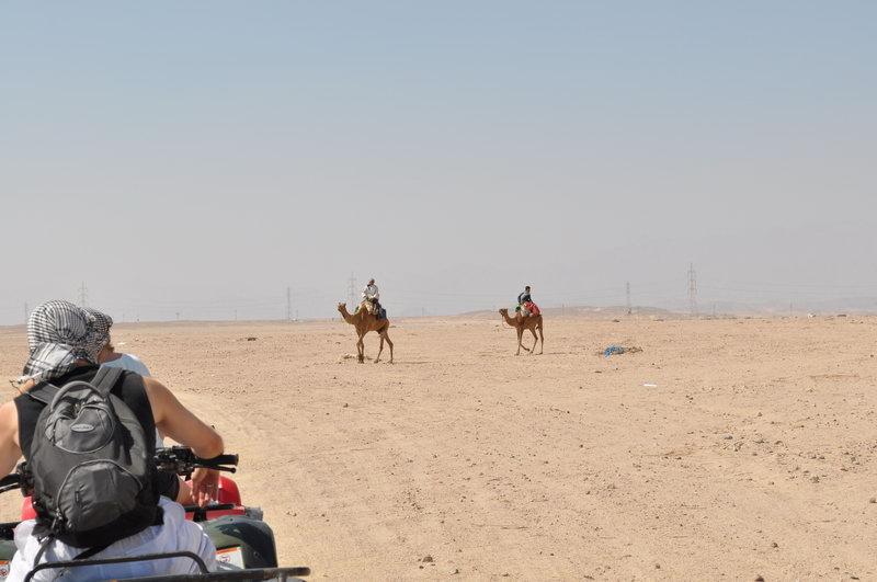 Egypt_0089