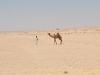 Egypt_0128