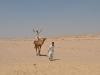 Egypt_0129