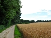 countryside_aug_2009_013