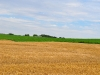 countryside_aug_2009_039