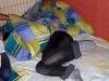 reims_july_2008_20090314_1006436845